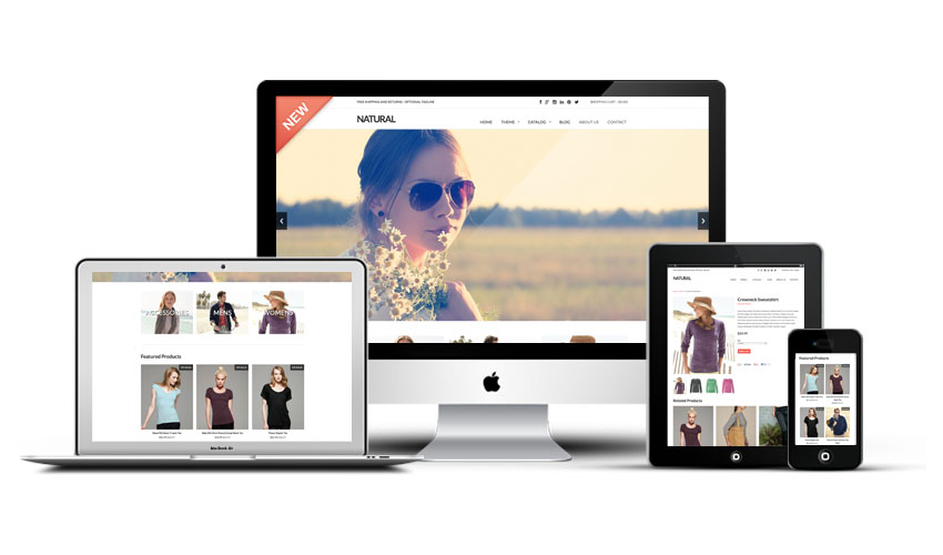 15 Best Responsive Shopify Themes