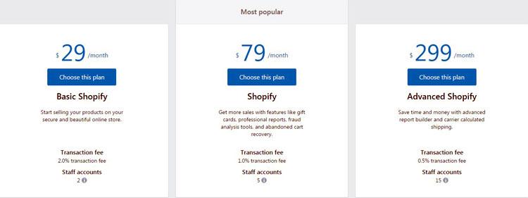 Shopify Store Plan