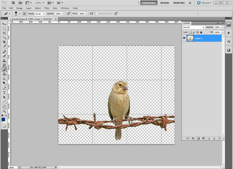 Photoshop Picture Without Background