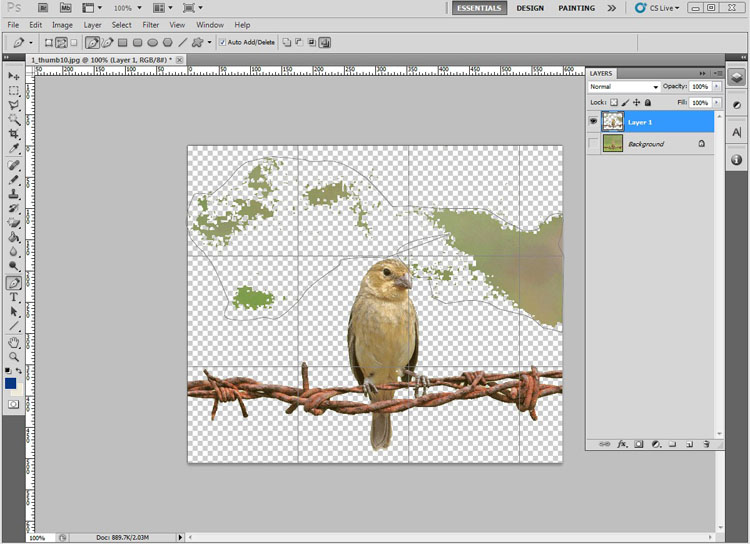 Photoshop Picture
