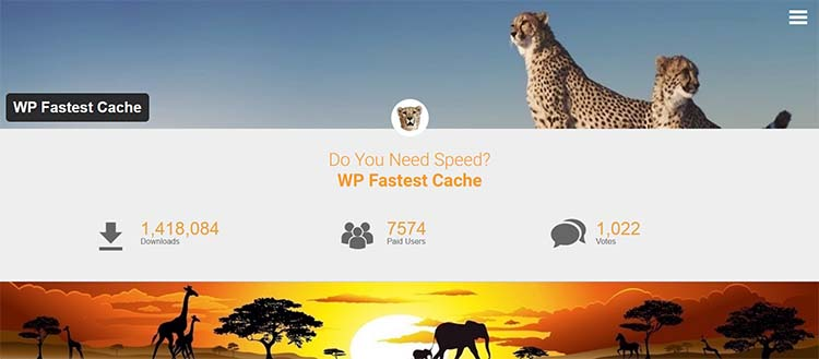 Caching Plugins WP Faster Cache