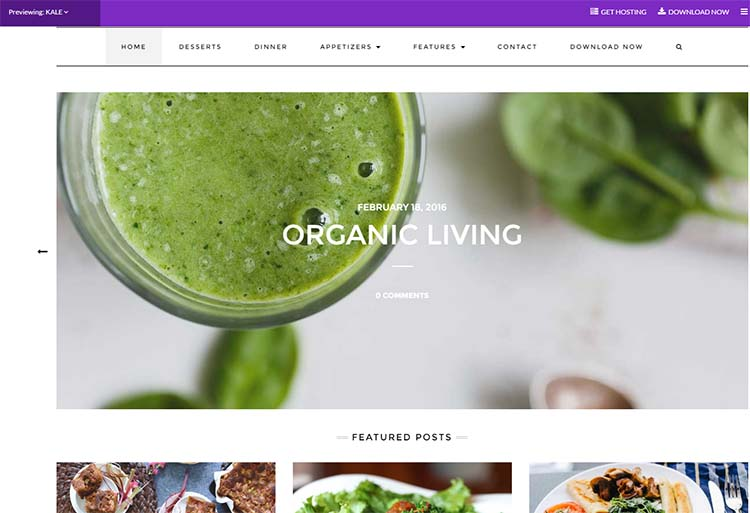 Free Plus Responsive WordPress Themes Kale
