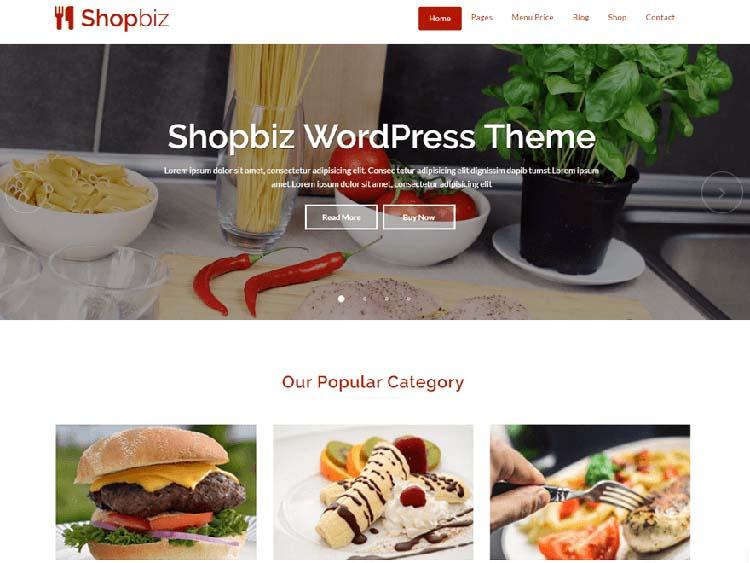 Free Plus Responsive WordPress Themes Shopbiz