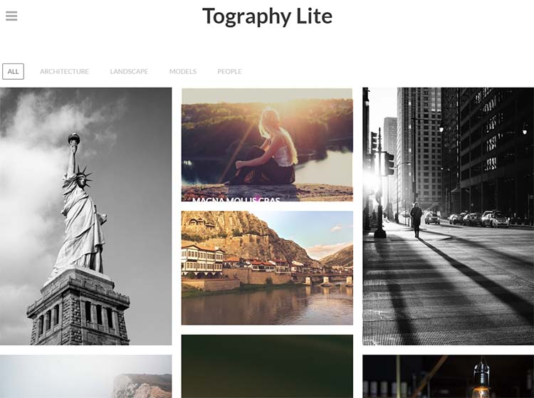 Tography Lite Photography WordPress Themes