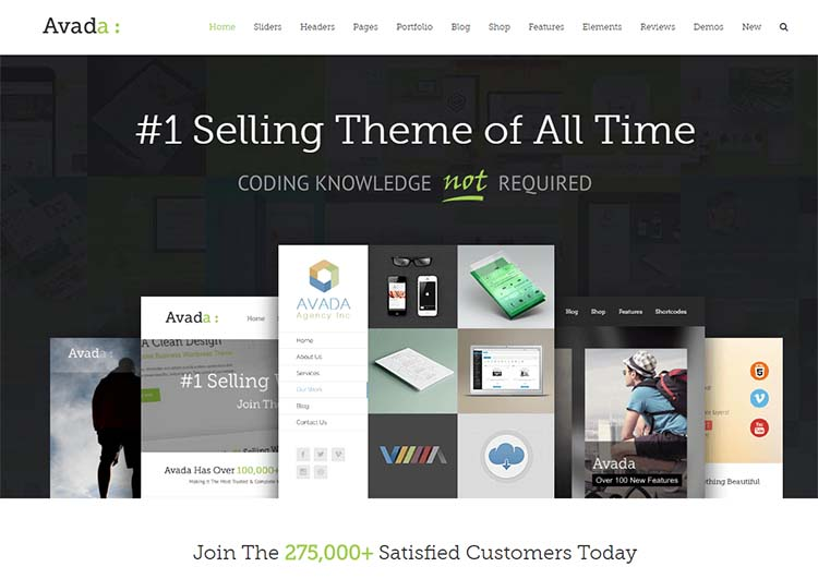 Avada Marketing WordPress Themes
