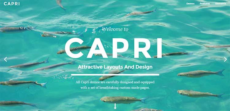 Capri Feminine WordPress Themes