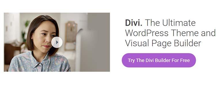 Divi Marketing WordPress Themes