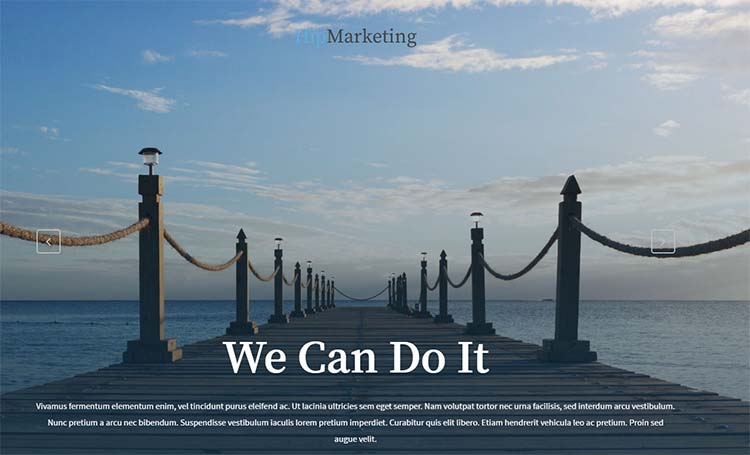 Marketing WordPress Themes