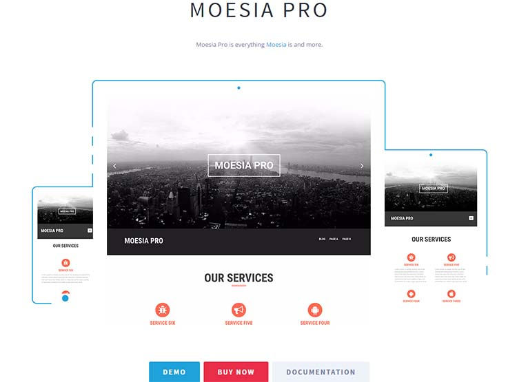 Moesia Pro OnePage WordPress Themes