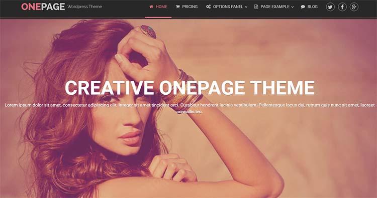 OnePage WordPress Themes