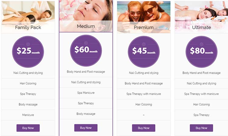Salon WordPress Themes Spa Lab Price Plan
