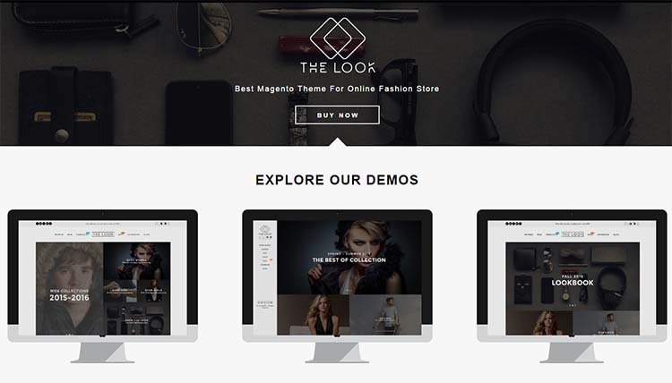 The Look Responsive Magento Themes