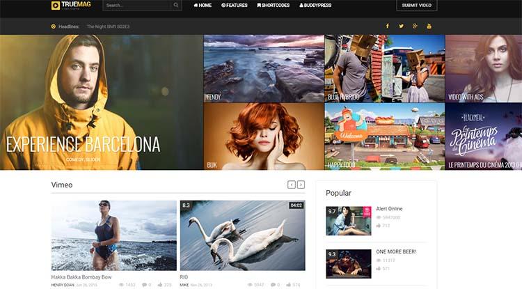 TrueMag WordPress Video Themes