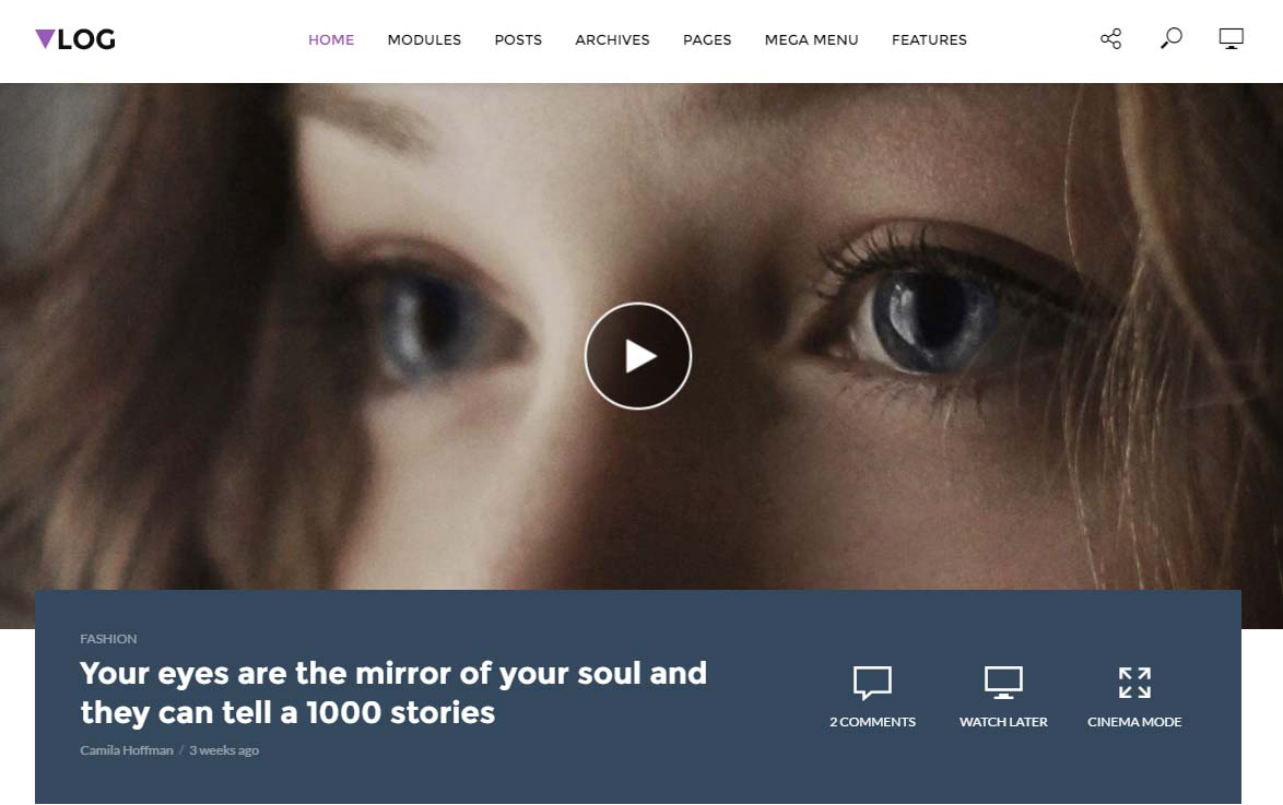 Volg WordPress Video Themes