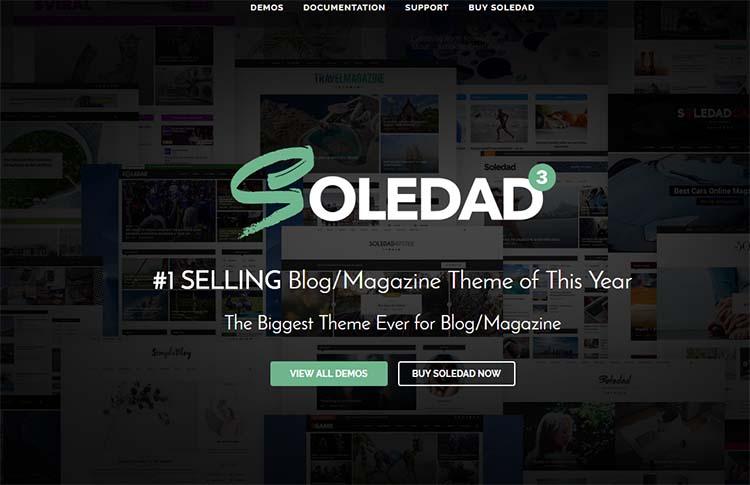 WordPress Food Themes Soledad